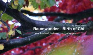 RAUMWUNDER mit Krista Weiss - Vortrag zum 'Energetischen Feng Shui' @ Kristas Loki Mo Licht- & Gemeinschaftszentrum für Heilung | Steffisburg | Bern | Schweiz